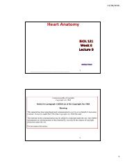 Heart_Anatomy-Lecture-LEO-2pp.pdf