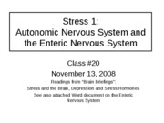 Class 20 Stress ANS and ENS upload