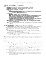 Foot ankle lower leg-word document (Notes 2).doc