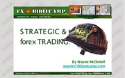 Wayne McDonell - FX Bootcamp Guide to Strategic and Tactical Forex Trading - (2008) - FxBoot-D2