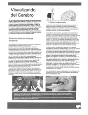 Visualizando el Cerebro