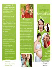 Fetal Development Brochure .pdf