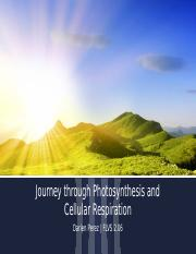 Journey through Photosynthesis and Cellular Respiration.pptx