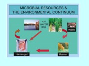 3.Microbial diversity_Env_Biotechnology_2-8-2011.ppt