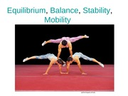 Equi, Balance,Stability, Mobility