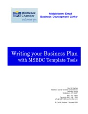Instructions for Business Plan Template.pdf.pdf
