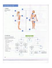 Visual Anatomy and Physiology Ch. 1 pg 30.png