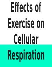 Case Study 3_ Effects of Exercise on Cellular Respiration.pptx