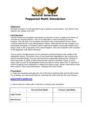 Peppered_Moth_Activity
