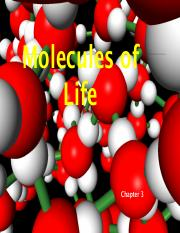 Ch. 3 Molecules of Life