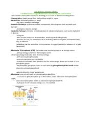 Cell Biology: Chapter 9 Notes.docx