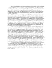 this essay focuses