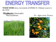 Energy Transfer Notes