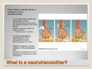 Neurotransmitters, Synthesis, and Reuptake 9-17-08