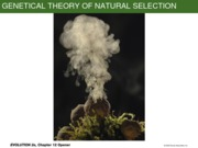 Ch12 NaturalSelection(JFM)