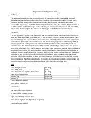 burning magnesium ribbon lab report