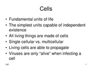 4-Cell
