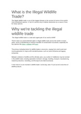 What is the Illegal Wildlife Trade
