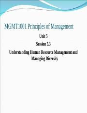 Understanding HRManagement and Managing Diveristy