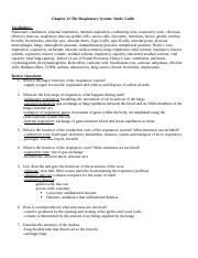 Chapter 22 The Respiratory System Study Guide