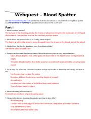 BloodSpatterAnalysisWebquest1.docx