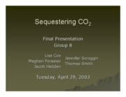 SEQUESTERING CO2 IN HOUSTON-POWERPOINT