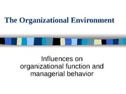 ORGANIZATIONAL ENVIRONMENT Powerpoint