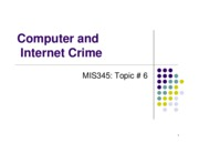 Topic 6 Internet_and_Computer_Crimes