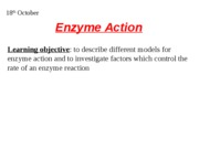 enzymes models of action