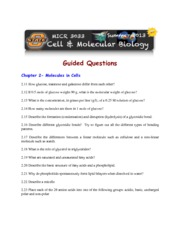 Guided Study 2B - Cell Chemistry