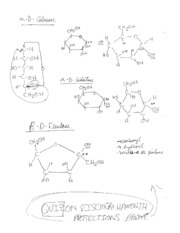 17_Biochemistry Test Notes