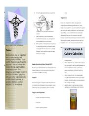 Occult-Brochure.docx