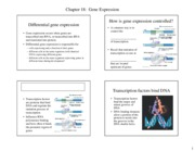 Ch 18-HANDOUT-Gene expression and cancer-F'13