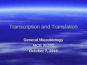 10-Transcription and Translation