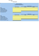 Excel Template P6-19-2