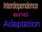 interdependence_and_adaptation