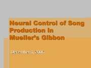 Neural Control of Song Production in Mueller's Gibbon - Student Presentation Assignment