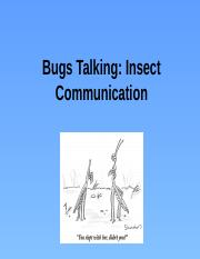 Bugs_talking_notes