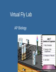 ap_lab_7_fly_lab_notes.ppt