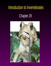 AP Ch. 29--Intro to Invertebrates.ppt