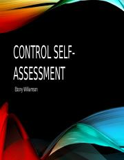 Control self-assessment.pptx