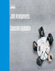 Joint arrangements and corp   liqui_solutions.pdf