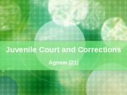 (21) Juvenile Court and Corrections