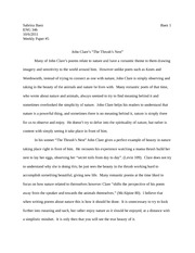 weekly paper #5 Eng 346
