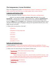 4. The Integumentary System Worksheet.docx