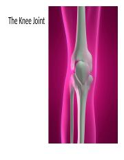 GCL Knee joint powerpoint