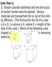 cells-practice-questions