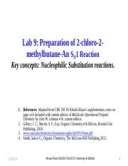 CHE 201-Fall 2017-Lab 9-SN1 Handout & notes (1).pdf
