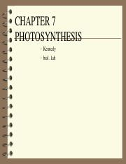 chap. 7 photosyn