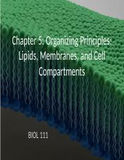 Chapter 5 Membranes and Cells